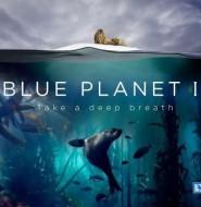 蓝色星球2-超震撼的科教纪录片